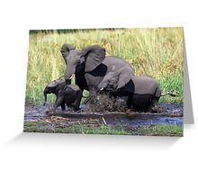 Family of elephants crossing water stream Greeting Card