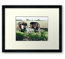 Friends come to say Moo to Casper Framed Print