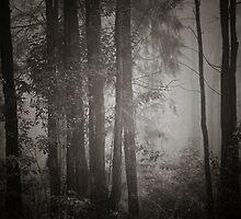 Mountain Mist by Lorraine Creagh