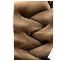 Sinuous Poster