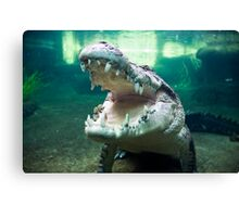 Rex, The 5 Metre Monster Crocodile Canvas Print