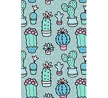 Pretty Cacti Photographic Print