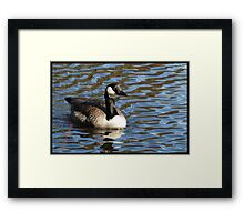 Water World - Lady of the Lake Framed Print