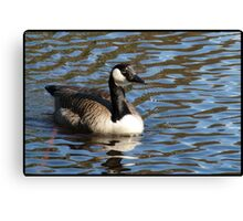 Water World - Lady of the Lake Canvas Print