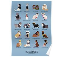 Cat World Leaders Poster