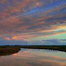 Irrigation channel, in the pink by Julie Sleeman