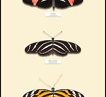 Butterfly Vertical Collection 1 - Specimen style print by Mark Podger