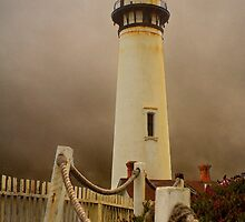 Pigeon Point by Wulfrunnut