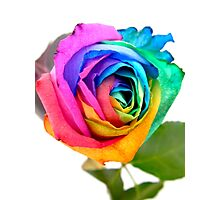Rainbow Rose 01 Photographic Print