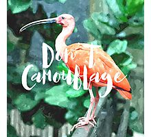 Don't Camouflage Photographic Print