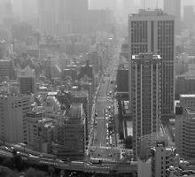tokyo fades to grey by Florian Verhein