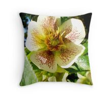 Flowers taken at Altamont Gardens Throw Pillow