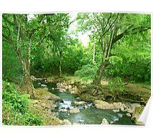 La Poza del Cajon, river near San Juan de Puriscal Take 2 Poster