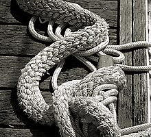 All Tied Up by Bob Wall