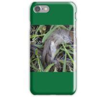 Dead bird in lavender. iPhone Case/Skin