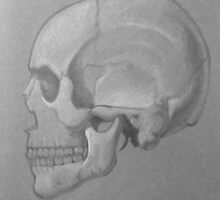Skull by cutielamerr