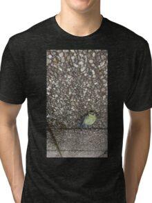 A dead bird looking still alive. Tri-blend T-Shirt