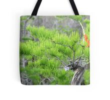 Dwarf Cypress Tree Tote Bag