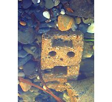 Run! There's A Cyberman In The Pebbles! Photographic Print