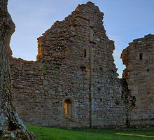Ruins of Pendragon Castle by Reinhardt