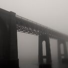 Old Rail Bridge, Dundee by Phill Jenkins