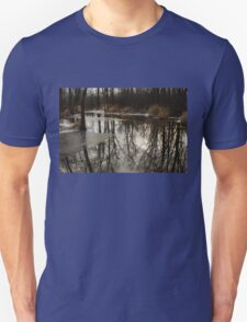 Of Trees and Mirrors - Prince Edward County Forest T-Shirt