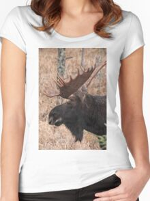 Bull moose - Algonquin Park, Ontario Women's Fitted Scoop T-Shirt