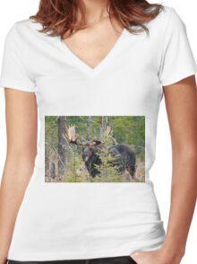 Bull moose - Algonquin Park, Ontario Women's Fitted V-Neck T-Shirt