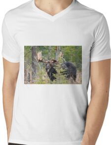 Bull moose - Algonquin Park, Ontario Mens V-Neck T-Shirt