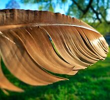 Of a Feather 2 by Skip Hunt