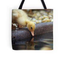 RES 2010 - 03 Tote Bag