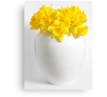 Daffodils in a White China Vase Canvas Print