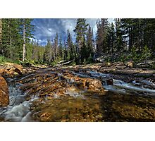 Utah Nature Photography - Provo River Photographic Print