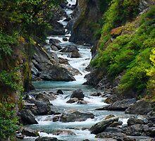 Mountain Stream, South Island New Zealand by Ian Beattie