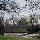 Lincoln Park Bridge In Spring by kkphoto1