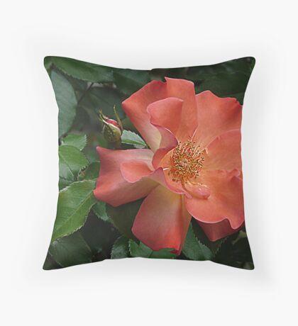 Knockout Rose of April Throw Pillow