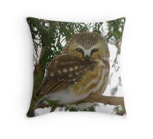 Northern Saw - Whet Owl - Ottawa, Ontario Throw Pillow