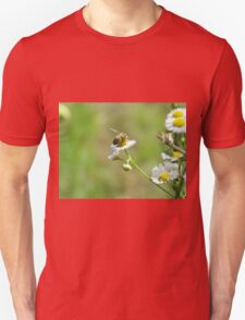 Bee on a white flower Unisex T-Shirt