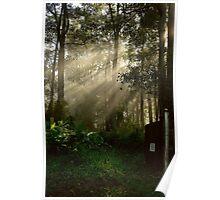 Good morning, sunshine! Poster