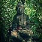 Bali by Caroline Fournier