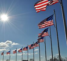 Flags at the Washington Monument by kgoodrow