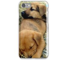 Just another day on the farm.........^ iPhone Case/Skin
