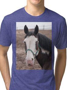 Brooklyn - NNEP Ottawa, Ontario Tri-blend T-Shirt