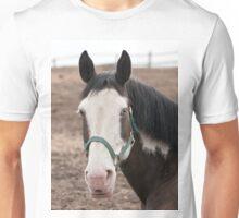 Brooklyn - NNEP Ottawa, Ontario Unisex T-Shirt