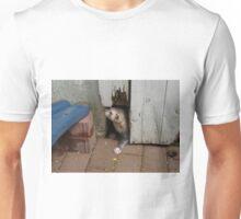 Ferret in autumn Unisex T-Shirt