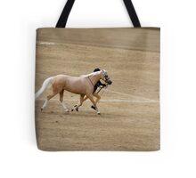 RES 2010 - 25 Tote Bag