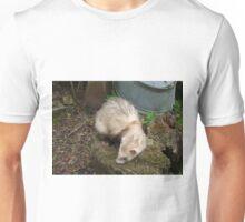 Ferret in spring Unisex T-Shirt
