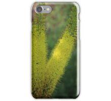 Summer in the Garden iPhone Case/Skin