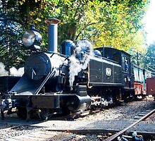 Puffing Billy at Emerald. by Greg Carrick