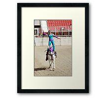 RES 2010 - 30 Framed Print